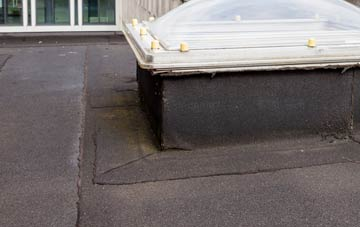 disadvantages of Greeny flat roofs