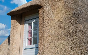 Greeny thatch roof disadvantages